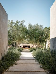 Image 3 of 16 from gallery of Tehama 1 House / Studio Schicketanz. Photograph by Joe Fletcher