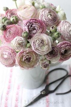 ana-rosa:    http://sylvia-homeandinspiration.blogspot.com.br/