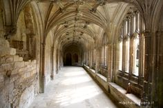 Cotswolds, chasing Harry Potter at Lacock Abbey. A photopost.