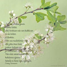 Ystävänpäivä Music Quotes, Art Quotes, Finnish Words, Happy Friendship Day, Wise Words, Life Is Good, Qoutes, Poems, Prayers