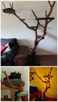 20 Purrfect DIY Projects for Cat Owners - DIY & Crafts yeah way cool oh and if I could make one