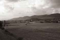 Euskal Herria. Trebiñu. San Martin Zar. Octubre de 2005