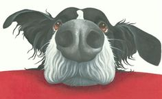 Lizzie Hall. border collie painting quirky canvas prints