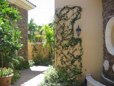Spanish entry #CourtYard #Landscape #Outdoor ༺༺  ❤ ℭƘ ༻༻