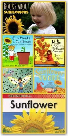 "books about sunflowers - opportunities for lots of math - how big, how long,how high, what colour. See also Eric Carles book ""the Tiny Seed""-- a lot of text. Preschool Books, Preschool Activities, Activities For Kids, Montessori, Growing Sunflowers, The Tiny Seed, Science, Children's Literature, In Kindergarten"