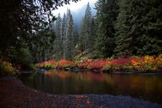https://flic.kr/p/YNeGRU | Autumn River | The lovely autumn colours reflecting on a river in Manning Park, British Columbia, Canada.