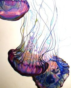 // water color jellyfish