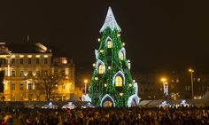 Christmas trees around the world – in pictures. Vilnius, Lithuania.