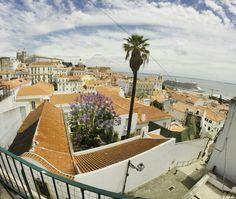 Lisbon / lisboa / portugal / portas da sol / travel