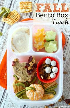 Make your holiday season a little healthier with this easy Fall Themed Bento Box Lunch.
