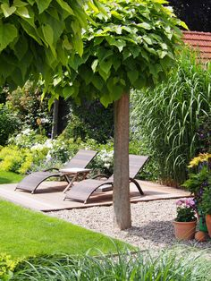 Garden view in July . Garden view in July . Informations About Pampasgras Pin You Herb Garden Design, Modern Garden Design, Patio Design, Modern Design, Modern Landscaping, Backyard Landscaping, Back Gardens, Outdoor Gardens, Amazing Gardens