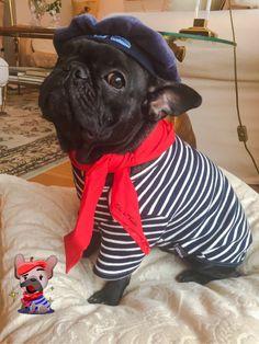 """""""Oui"""", French Bulldog Puppy"""