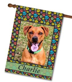 """Paw Print Portrait I Photo House Flag: Flag Size 28"""" x 40"""" Flag stand sold separately Proudly Printed in the USA Vibrant colors printed on a poly/cotton outdoor quality fabric. Digitally printed"""