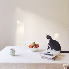 Sunday afternoon, cat & kinfolk table