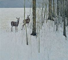 Kingswood Ron | Head Lands ― White-tailed Deer | MutualArt