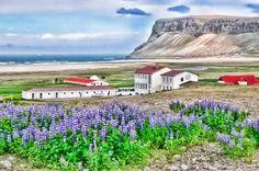 Breidavik, Iceland