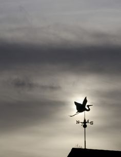 Very cool stork weather vane, flying against dark clouds.