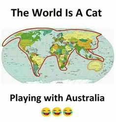 "38 Hilariously Unhelpful Gems From Terrible Maps - Funny memes that ""GET IT"" and want you to too. Get the latest funniest memes and keep up what is going on in the meme-o-sphere. Memes Humor, Cat Memes, Funny Fails, Funny Jokes, Image Facebook, Like A Cat, Facebook Humor, Funny Bunnies, Satire"