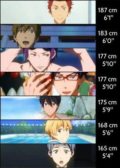 the heights of the characters from Free! Iwatobi Swim Club