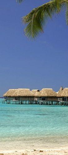 #Sofitel_Moorea_la_Ora_Beach_Resort - #Negril - #Moorea http://en.directrooms.com/hotels/info/5-145-2701-39738/