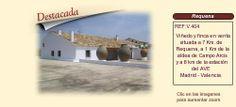 V404 Campo Arcis. Requena  Viñedo y finca en venta