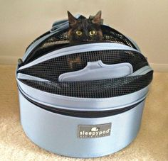 Review: Sleepypod Mobile Pet Bed