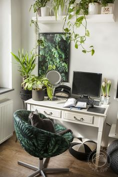 Urban jungle :D Decor, Furniture, Interior, Urban Jungle, Home Decor, Standing Desk, Monstera, Desk