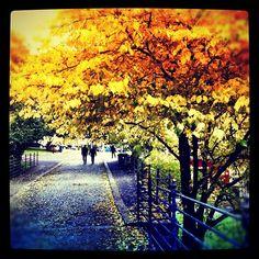 "@sisand's photo: ""Oslo <3"""