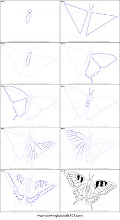 How to Draw a Swallowtail Butterfly printable step by step drawing sheet : DrawingTutorials101.com