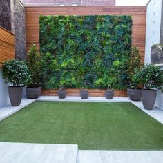Garden Planning, Contemporary Garden, Vertical Garden Design, Garden Design, Fake Plants, Backyard Landscaping Designs, Garden Projects