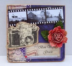 Best of Betsy's Camera and Filmstrip perhaps not the flower