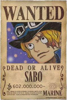 Top 20 Wanted One Piece Anime, One Piece Ex, Sabo One Piece, Wanted One Piece, One Piece Bounties, Tama, Cartoon Characters, Dragon Ball, Berries