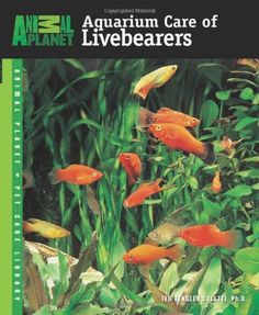 Aquarium Care of Livebearers (Animal Planet Pet « Library User Group