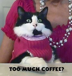 Too Much Coffee?