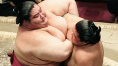 sumo | iPads and Sumo Wrestlers: Is It Even Possible?