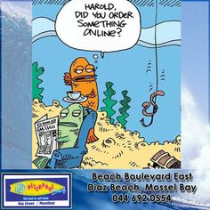 Here a great laugh for the day! #funny #online #fish