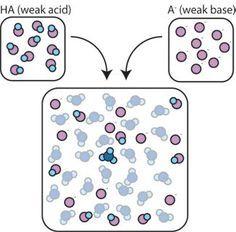 How Buffers Work: Chemistry