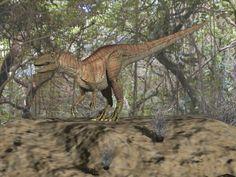 Fukuisaurus Sea Dinosaurs, Spirit, Romantic, Adventure, Animals, Animales, Animaux, Animal, Romance Movies