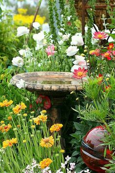 Beautiful cottage country garden with a peek of the Bird Bath