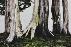 Photos of Historic Bonsai Masterpieces | Atlas Obscura