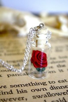 Gothic Jewelry Box Diy I'm so going to make this!Beauty and the Beast Rose Vial Necklace Cute Jewelry, Jewelry Necklaces, Jewelry Box, Jewellery, Beauty And The Beast Theme, Beauty And The Beast Crafts, Beauty Beast, Diy Beauty, Vial Necklace