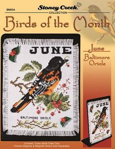 Bird of the Month - June (Baltimore Oriole) – Stoney Creek Online Store