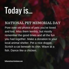 9/11 – National Pet Memorial Day