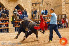 torodigital: Cantavieja disfruta con su feria taurina de mayo