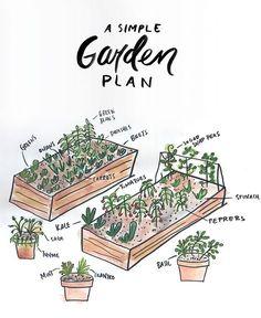 4x8 raised bed - garden layout | The Secret Garden ...