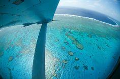 La Grande barrière de corail La Grande barrière de corail est unique au monde. Il s'agit tout simplement du plus grand ensemble de récifs coralliens de la planète, et très certainement de l'un des sites naturels les plus beaux de la Terre. Les chiffres parlent d'eux-mêmes: 2 000 kilomètres de longueur, 2 500 récifs, 900 îles, 1 500 espèces de poissons… Toutefois, la santé de la Grande barrière inquiète. Elle aurait en effet perdu la moitié de sa superficie pendant les trente dernières…