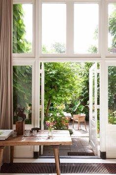 Small green back yard, big windows