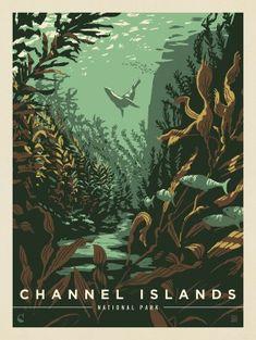 Channel Islands National Park, Sketching Techniques, Flora Und Fauna, Design Poster, Poster Designs, Vintage Travel Posters, Hand Illustration, Pics Art, Grafik Design