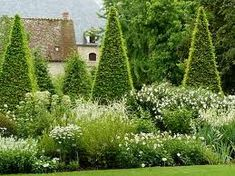 formal clipped yew & cottage planting: love the contrast between formal and informal