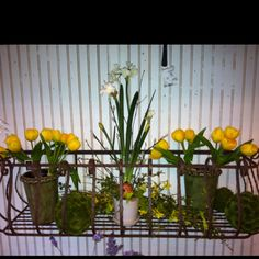 Tulips, moss covered balls, and greenery decorate this wrought iron window box.  Not just for windows.  Looks great on any wall.